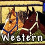 Western / Rodeo